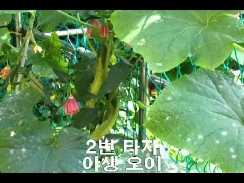 SONY_1630590371r4o.jpg